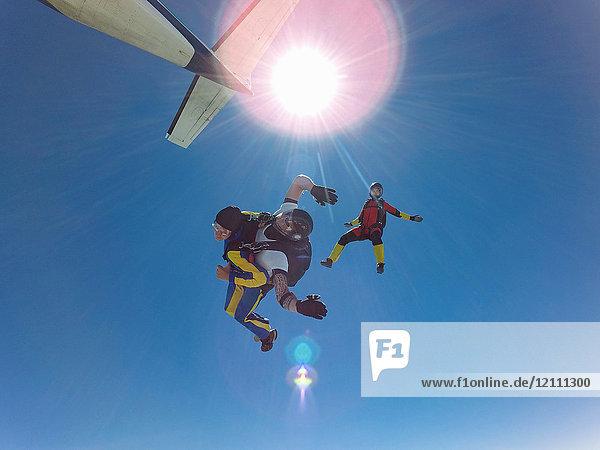 Drei Fallschirmspringer im Freifall, Leutkirch im Allgäu, Baden-Württemberg, Deutschland, Europa