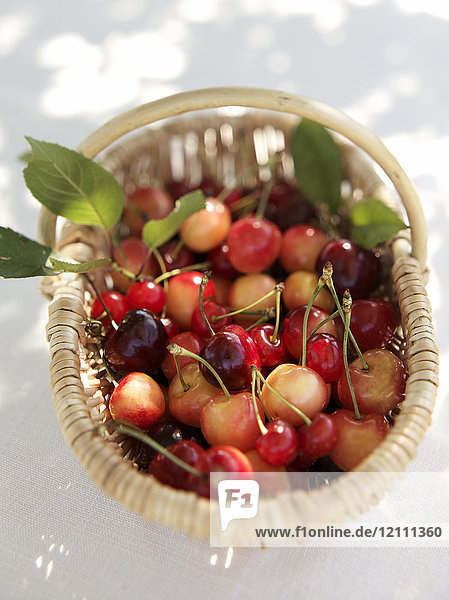 panier de cerises