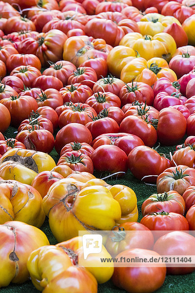 Assortment of old-fashioned tomatoes