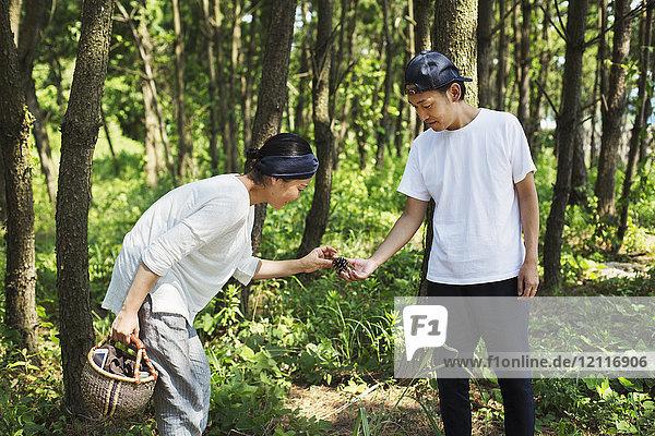 Mann und Frau tragen einen Korb  die draußen in einem Wald stehen und Pilze sammeln.