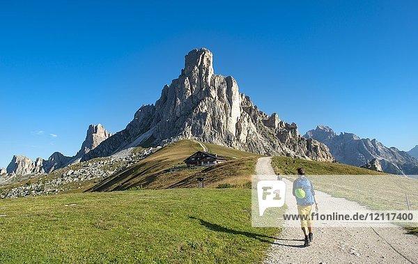 Wanderer auf dem Wanderweg zum Nuvolau  Gipfel La Gusela am Passo Giau  hinten Gipfel Averau  Dolomiten  Südtirol  Trentino-Alto Adige  Italien  Europa