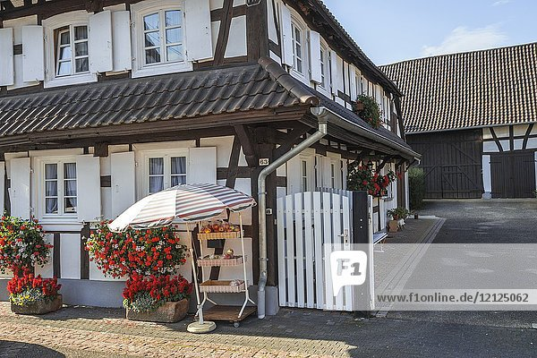 Half-timbered houses with flower decoration and fruit sale in Hunspach  small village in Northern Alsace  North Vosges  France  member of the most beautiful villages of France  department Bas-Rhin.
