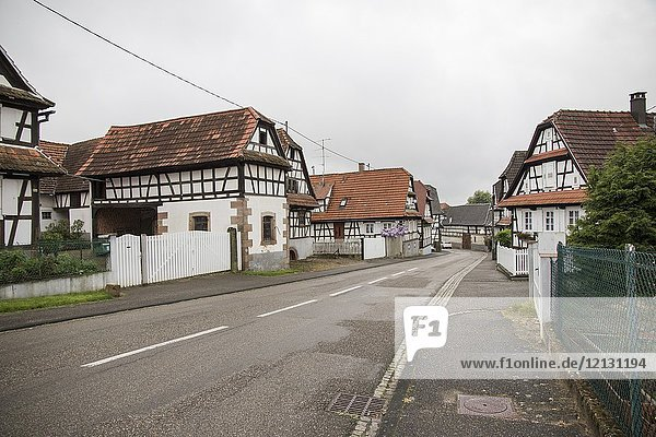 Traditional half-timbered houses in the streets of the small town of Hunspach in Alsace  on May 13  2016 in France.
