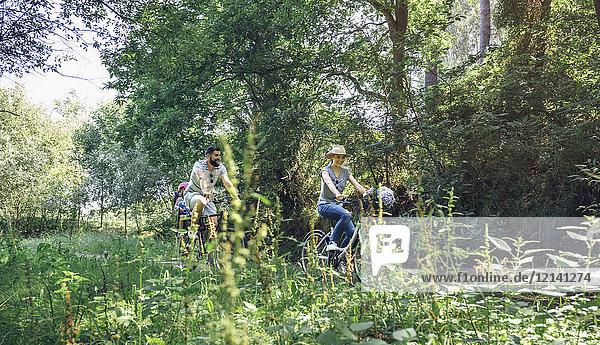Familienradfahren im Wald