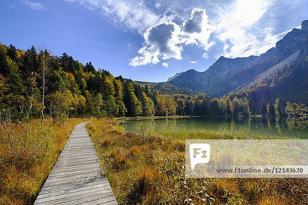 Deutschland  Bayern  Oberbayern  Chiemgau  Inzell  Frillensee im Herbst