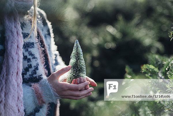 Kleines Mädchen hält einen Spielzeug-Weihnachtsbaum  Nahaufnahme