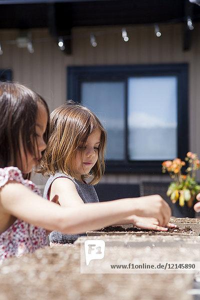 Mädchen pflanzen Setzlinge auf der Sonnenterrasse
