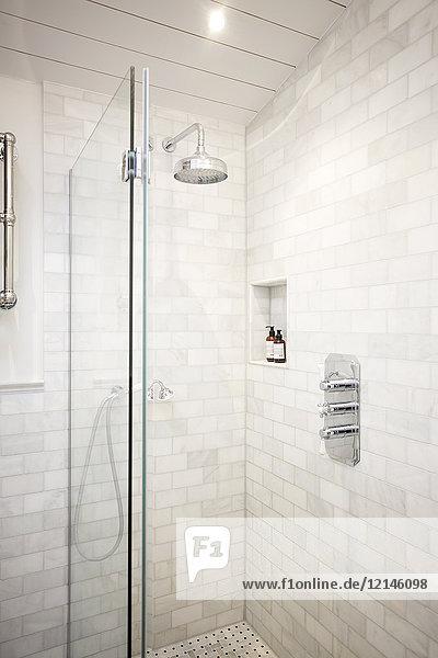 Luxus-Hausvitrine Badezimmerdusche