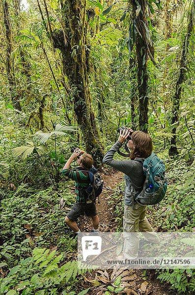 Birding on the Cano Negro Trail  Santa Elena Cloud Forest Reserve  Costa Rica.