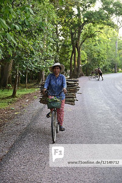 Cambodia  Siem Reap  Transport of wood with bicycle.