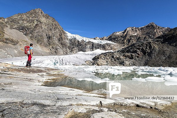 Hiker looking the Fellaria Glacier  during the summer  Malenco Valley  Province of Sondrio  Valtellina  Lombardy  Italy Europe.