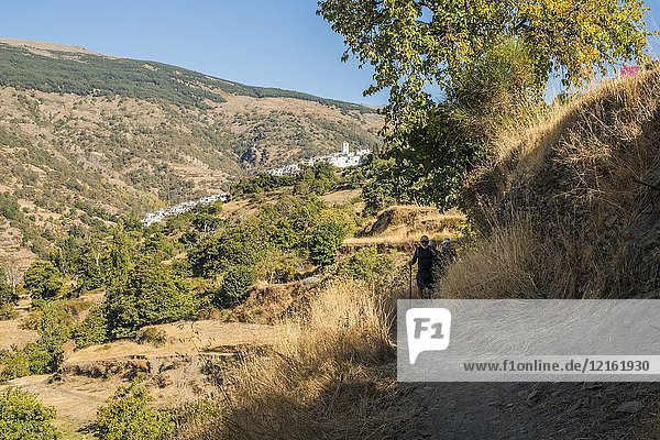 Hikers on a path between Capileira and Bubion in the Alpujarras  Andalusia  Spain.