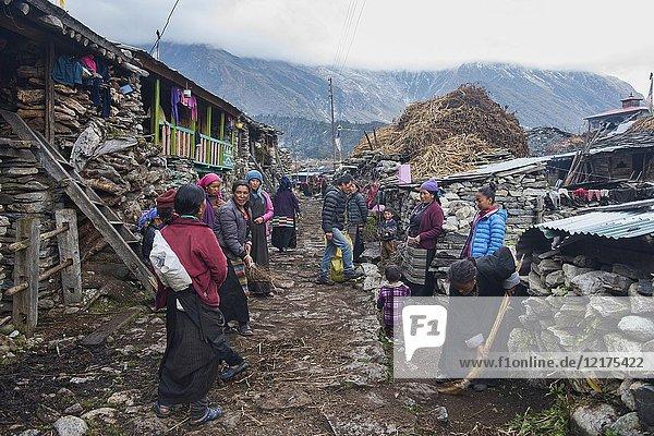 Villagers in the old village of Samagaon  a Tibetan area in the Manaslu region  Nepal.