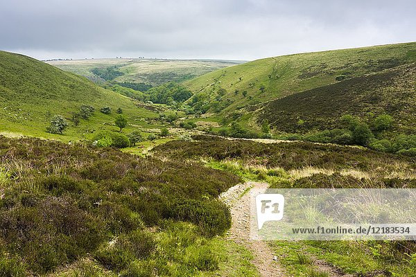 View from Little Black Hill towards the Doone Valley in Exmoor National Park near Malmsmead  Devon  England.