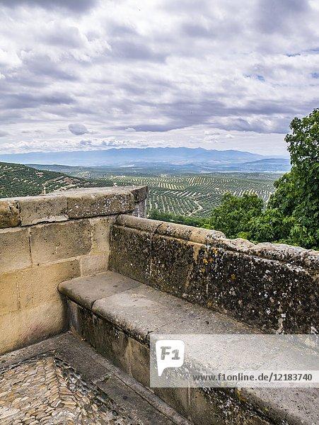 Campos de Olivos desde el mirador de San Lorenzo. Úbeda. Jaén. Andalusia. Spain.