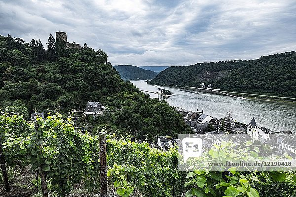 Gutenfels Castle near Kaub  Rhineland-Palatinate  Germany  Europe.