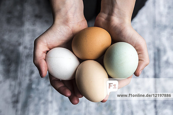 Different eggs  white  brown  light brown and green eggs