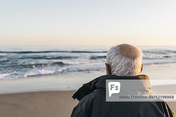 Senior Mann mit Blick aufs Meer,  Rückansicht