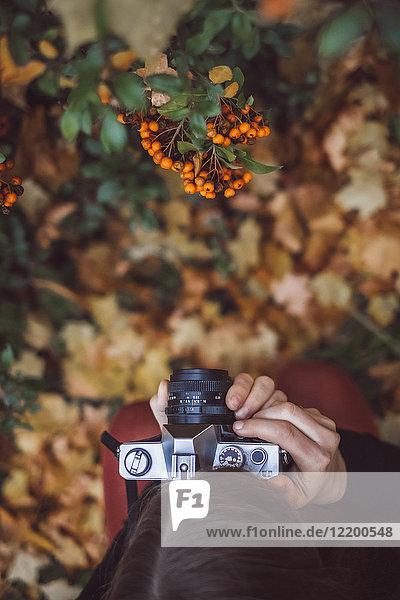 Junge Frau fotografiert in herbstlicher Natur mit alter Kamera  Draufsicht
