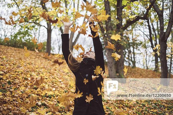 Fröhliche junge Frau wirft Herbstlaub in die Luft