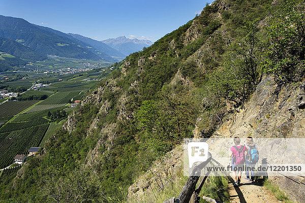 Italien  Südtirol  Vinschgau  Naturns  Sonnenberg Panoramaweg  Wanderinnen
