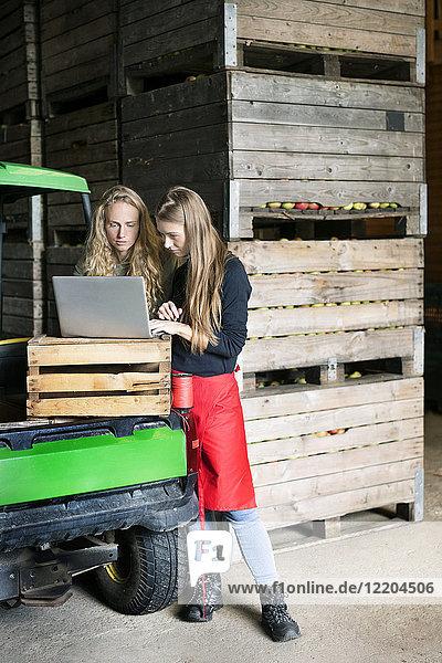 Zwei Frauen benutzen Laptop zwischen Kisten auf einem Bauernhof