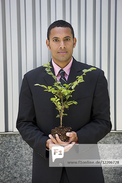 Serious mixed race businessman holding seedling