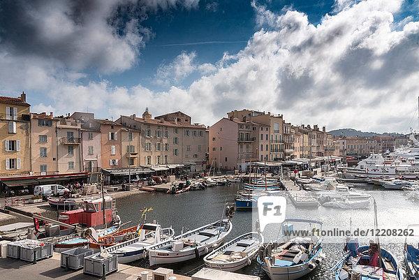 Le Vieux Port  St Tropez  Provence-Alpes-Cote d'Azur  France