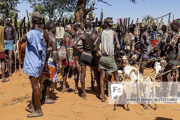 Young Hamar Men Buying and Selling Livestock At The Weekly Tribal Market In Dimeka  Omo Valley  Ethiopia.