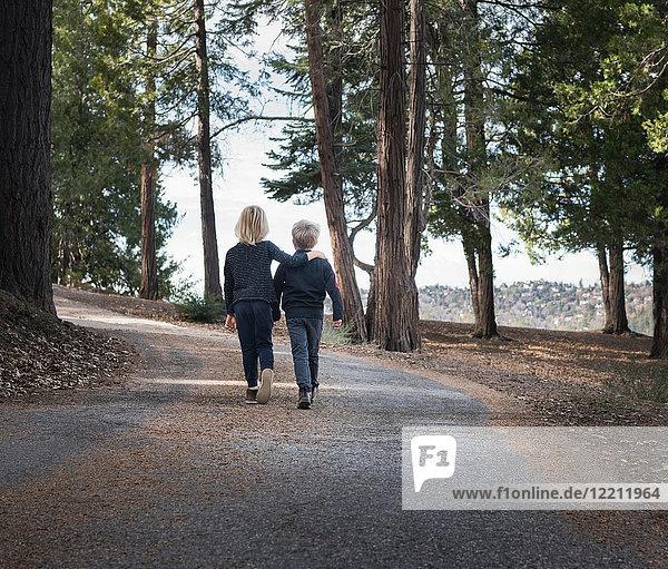 Boys walking on road through woods  Lake Arrowhead  California  USA