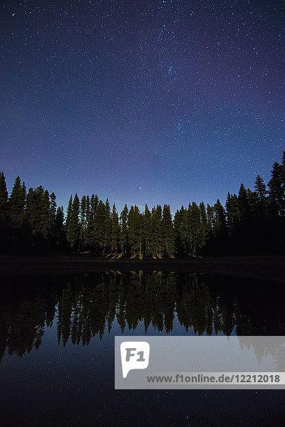Sternenhimmel  Nickel Plate Provincial Park  Penticton  Britisch-Kolumbien  Kanada
