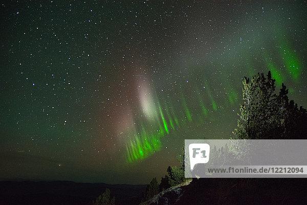 Polarlichtbogen  Nickel Plate Provincial Park  Penticton  Britisch-Kolumbien  Kanada