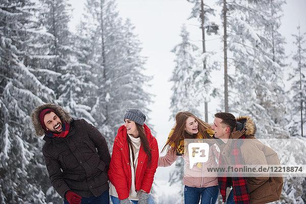 Freunde lachen im Schnee