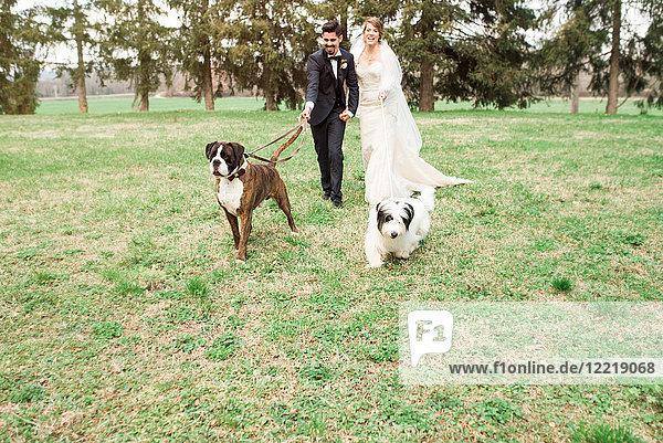 Porträt der Braut und des Bräutigams mit ihren Hunden