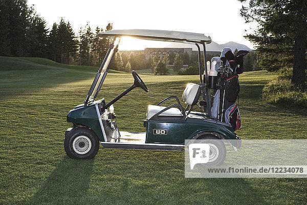 Ein Golfwagen mit Taschen  der auf einem Golfplatz steht.