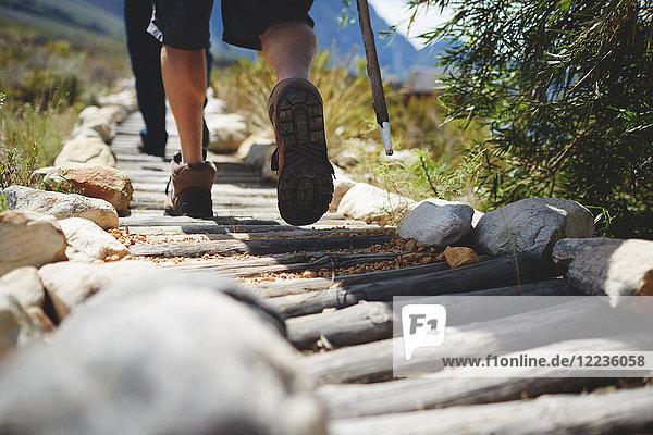 Füße des männlichen Wanderers beim Wandern auf dem Rundholzweg