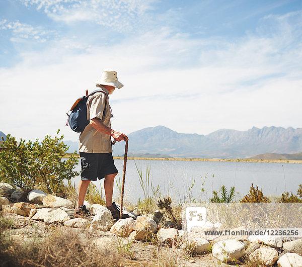 Männlicher Wanderer mit Rucksack und Wanderstock am sonnigen Sommerseeufer