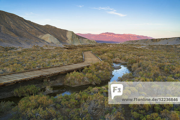 USA  California  Death Valley National Park  Salt Creek  Boardwalk next to stream