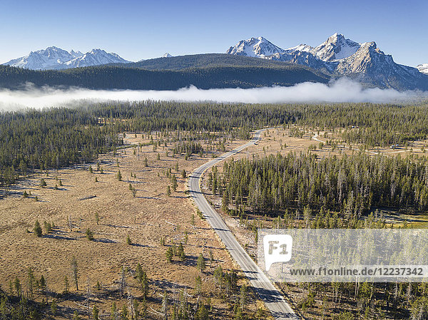 USA  Idaho  Sawtooth Range  Road in forest with snowcapped mountains in background