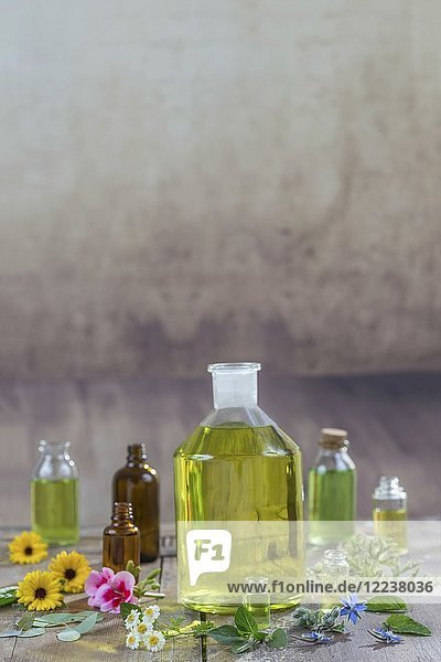 Verschiedene Heilblüten  Kräuter und Öle