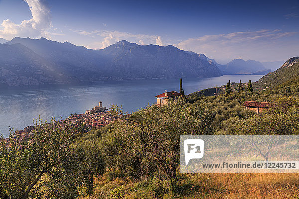 Elevated view of Castello Scaligero (Scaliger Castle)  Malcesine  Lake Garda  Veneto  Italian Lakes  Italy  Europe