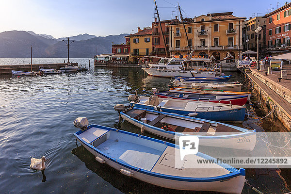 View of boats in Malcesine Harbour by the Lake  Malcesine  Lake Garda  Veneto  Italian Lakes  Italy  Europe