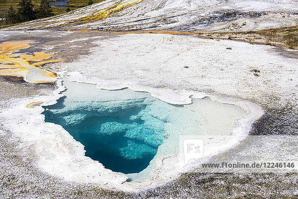 Blue holes and white crystals  Yellowstone National Park  UNESCO World Heritage Site  Wyoming  United States of America  North America