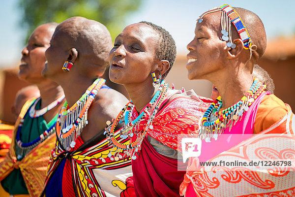 Masai women singing and dancing  Masai Mara  Kenya  East Africa  Africa