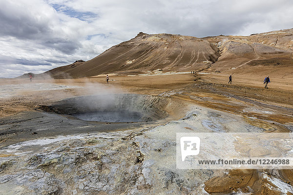 Hverarondor Hverir mud pots  steam vents  and sulphur deposits on the north coast of Iceland  Polar Regions