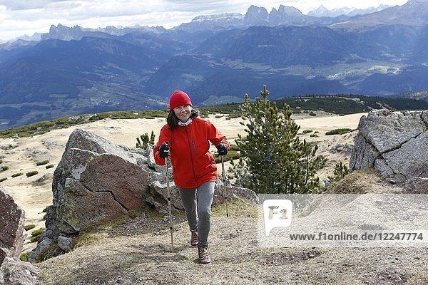 Frau wandert im Gebirge  Wandergebiet Rittner Horn  auch Rittnerhorn  Südtirol  Italien  Europa