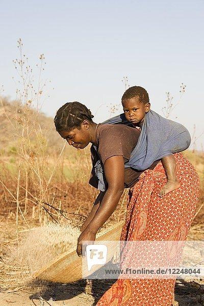 Tonga-Frau mit Kind auf dem Rücken  die Körner sichtet  Lake Kariba  Sambia  Afrika