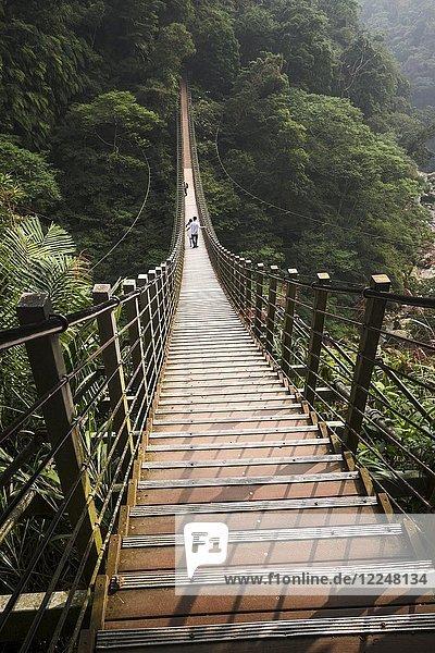 Menschen auf Hängebrücke  Sky ladder  Zushan  Nantou  Taiwan  China  Asien