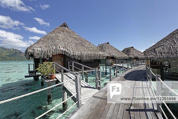 Wasserbungalows  Steg  Hilton Hotel  Moorea  Pazifik  Gesellschaftsinseln  Französisch Polynesien