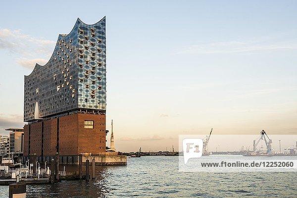 Elbphilharmonie im Abendlicht  Architekten Herzog & De Meuron  Hafencity  Hamburg  Deutschland  Europa